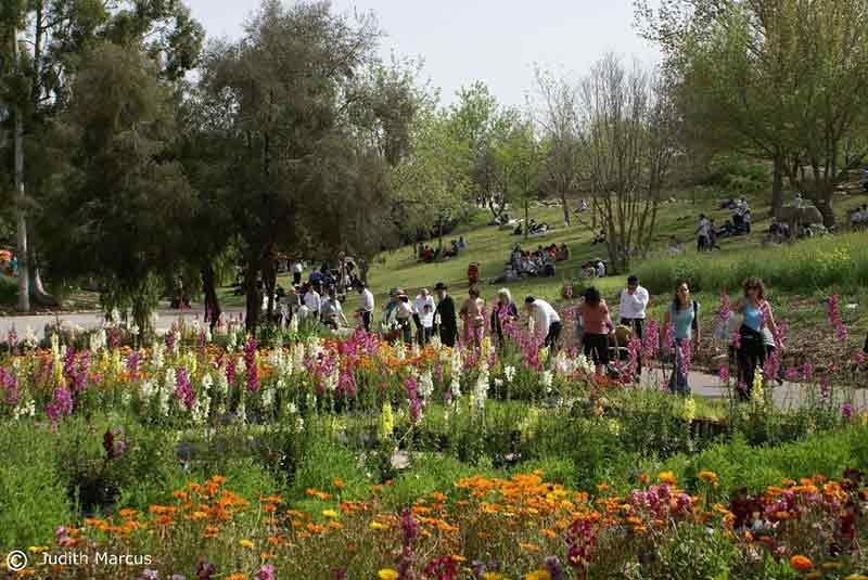 Jardín Botánico de Jerusalén: Un oasis de paz en una ciudad atribulada